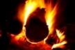 Ogień Autor - Grzegorz Sawko